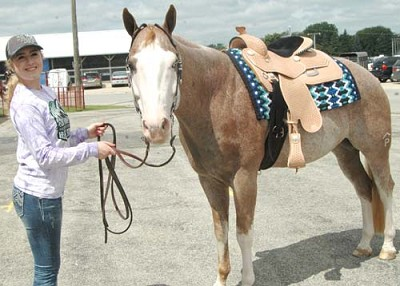 Taylor Howard has brought her horse, Benji, to the Olmsted County Fair for six years. �He�s really calm,� she said of Benji. �He�s got a really good personality.�