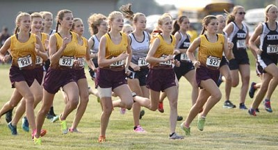 Stewartville�s varsity seven, all visible at the start of the 2017 Glomski Invite are, from left, Gloria Nelson (920), Olivia Field (just right of Nelson), Laura Pedelty (923), Gracie Waltman (just right of Pedelty) and the three Tiger frontrunners,from left, Isabel Field, Kailee Malone and Abby Orvis.